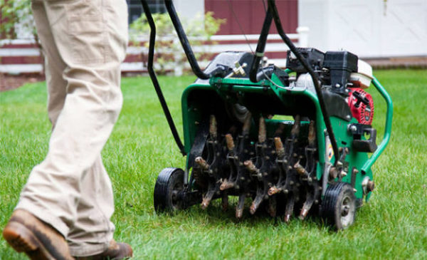 Aeration And Seeding Pro Gr Lawn Care